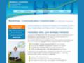 Borius-Conseil : conseil en marketing et communication