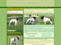 Screenshot de Elevage du Bois de Saint-Cyr par Robothumb.com