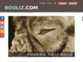 Screenshot de Bouliz.com par Robothumb.com