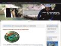 Voir la fiche détaillée : Canyoning et escalade dans le Verdon