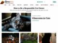 Details : About.Com's Cats