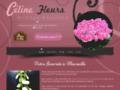 Voir la fiche détaillée : Fleuriste Marseille