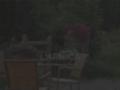 Chambres d'hôtes Arnica