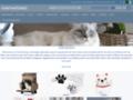 La boutique pour les chats et les amoureux des chats