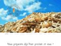 Détails : Bois de chauffage Bonnaventure