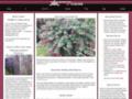 Details : Gardening with Ciscoe