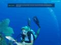 Details : Dive Cayman