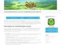 Détails : Dofus Touch, votre jeu en ligne
