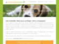 Détails : La meilleure mutuelle pour votre chien