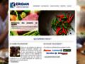 Détails : Eridan – Société de négoce en produits alimentaires asiatiques