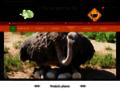 Voir la fiche détaillée : Escargotruche vente de produits d'escargot et d'autruche