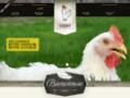Voir la fiche détaillée : PÂTÉ AU POULET- Poitrines de poulet marinées