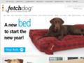 Details : Fetch Dog