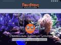 Details : Fish Geeks