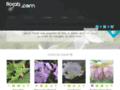 Flos Sabaudiae : Plantes Alpines, vivaces rares