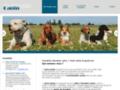 Voir la fiche détaillée : Dresser vos canins à votre domicile dans l'Hérault (34)
