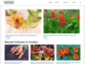 Details : Gardener's Path