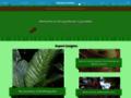 Details : GardenGuides