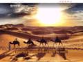 Voir la fiche détaillée : dromadaire marrakech