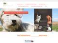 Transports - secours animaux