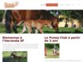 Voir la fiche détaillée : Pension chevaux, cours et stage d'équitation dans les Landes (40)
