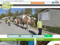 Voir la fiche détaillée : Hébergement en mobil-home meublé dans les Bouches du Rhone