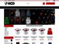 Détails : ICCO 4 métiers au service du composite
