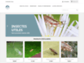 Voir la fiche détaillée : Aphidoletes aphidimyza