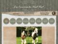 Détails : Pension, débourrage et transport de chevaux : Les Crinières du Haut Vent