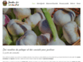 Jardin des aromates, le blog de cuisine pour bien débuter