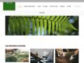 Détails : Les plantes dépolluantes
