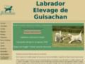 élevage de labrador Guisachan, chien labrador à commander