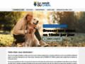 Détails : Comment dresser son chien