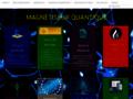 Détails : Magnétiseur Quantique