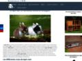 Voir la fiche détaillée : mon lapin nain, le spécialiste du lapin nain