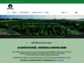 Détails : N°l Vert - Sapin de N°l - Producteur