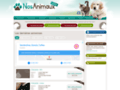 Nos Animaux .com : Animaux Perdus et Trouvés