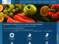 Détails : Obésité Belgique