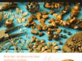 Détails : Œil de Tigre, la pierre angélique