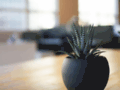 Details : Perry Smith Enterprises Java Q & A