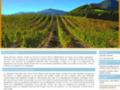 Voir la fiche détaillée : Un domaine viticole à visiter