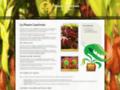 Détails : Plante carnivore