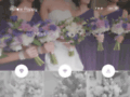 The Purple Poppy
