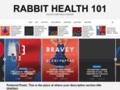 Details : Rabbit Health in the 21st Century