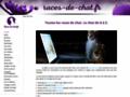 Voir la fiche détaillée : Site dédié à tous les amoureux des chats