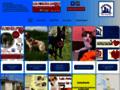 Détails : A adopter chiens et chats au refuge de Nargis, 45 limite 77