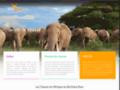 Safari de chasse, une activité réglementée