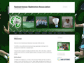 Details : Sask Badminton