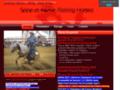 Seine et Marne Reining Horses