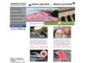 Voir la fiche détaillée : Récupération de Permis de conduire annulé ou suspendu